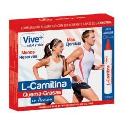 L-Carnitina Liquida Vive++