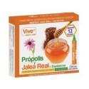 Propolis y Jalea Real+ Equinacea Vive
