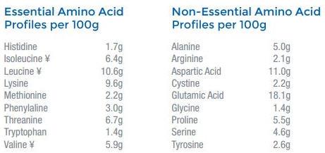 Whey Protein Aminoácidos